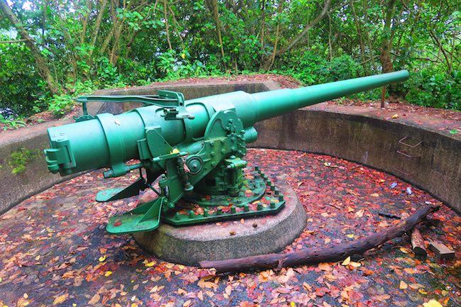 WWII Gun in Heritage Trail Pago Pago American Samoa