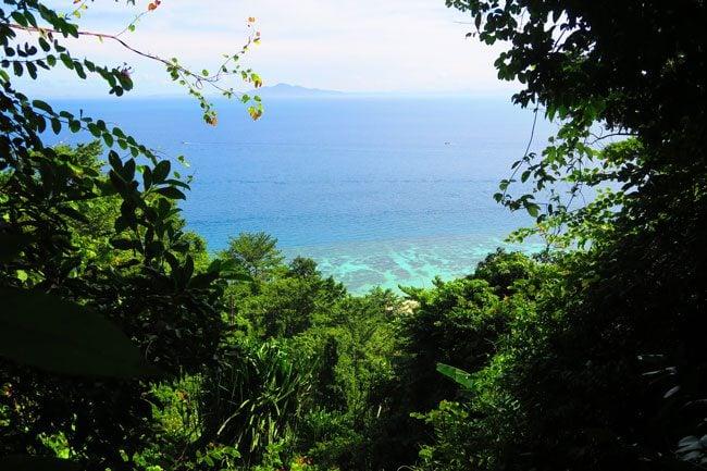 coral-reef-near-rantee-beach-ko-phi-phi