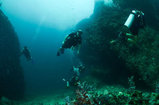 diving-ko-haa-in-thailand