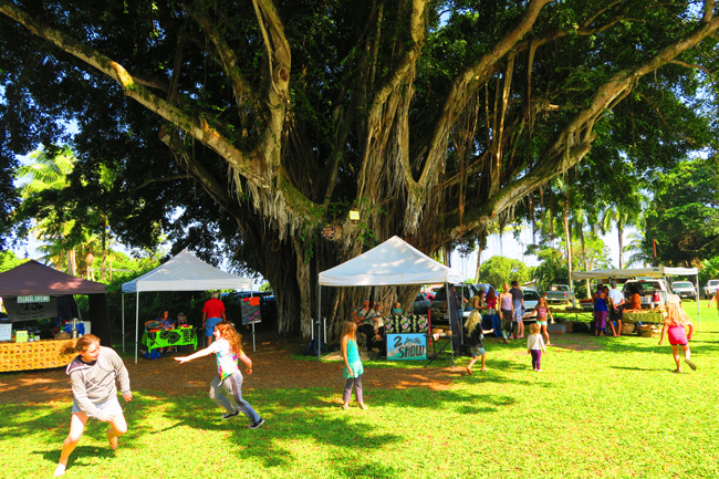 Hawi Farmers Market - Big Island Hawaii