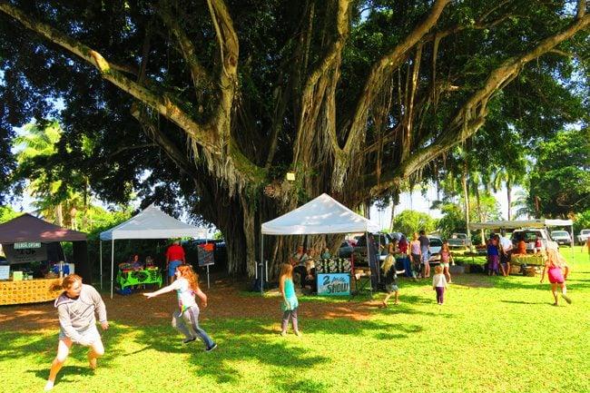 Hawi Farmers Market - Big Island Hawaii