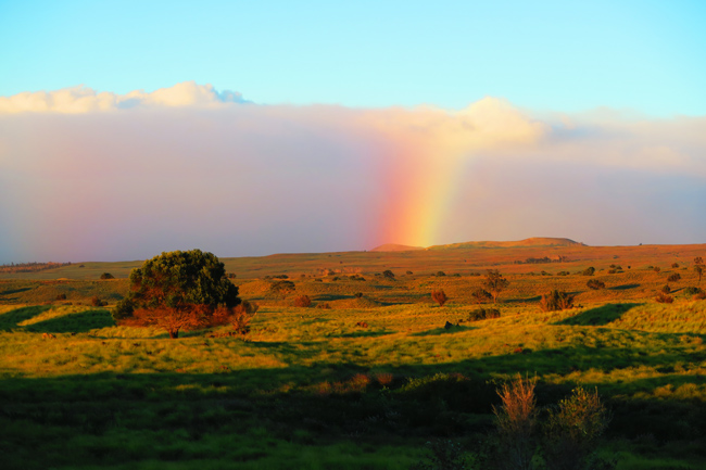 Rainbow in Saddle Road - Big Island Hawaii