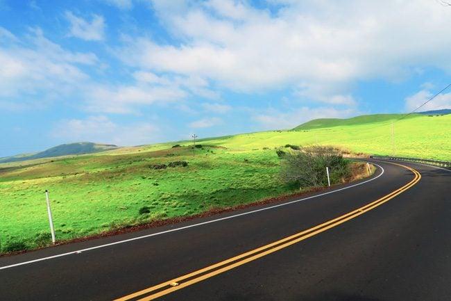 Road to Waimea - Big Island Hawaii