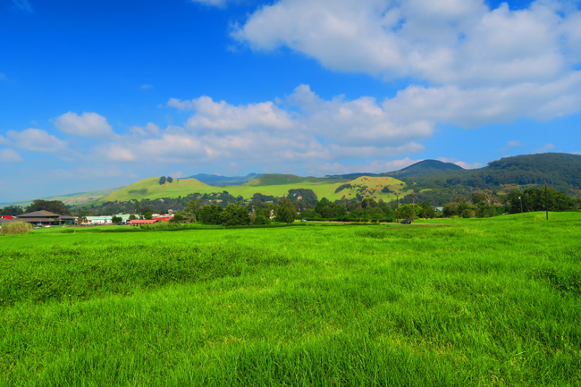 Road to Waimea rolling green hills - Big Island Hawaii
