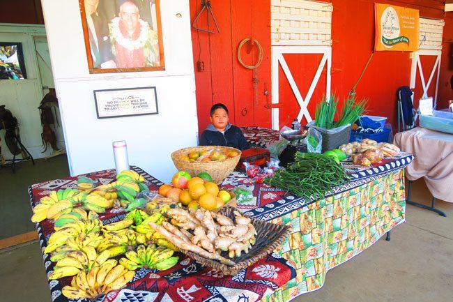 Waimea Farmers Market - Big Island Hawaii