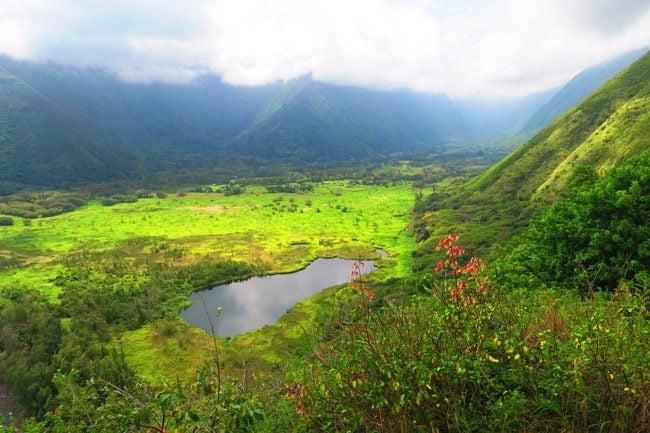 Waipio Valley Big Island Hawaii