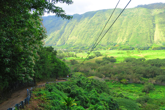 Waipio Valley steep road - Big Island Hawaii