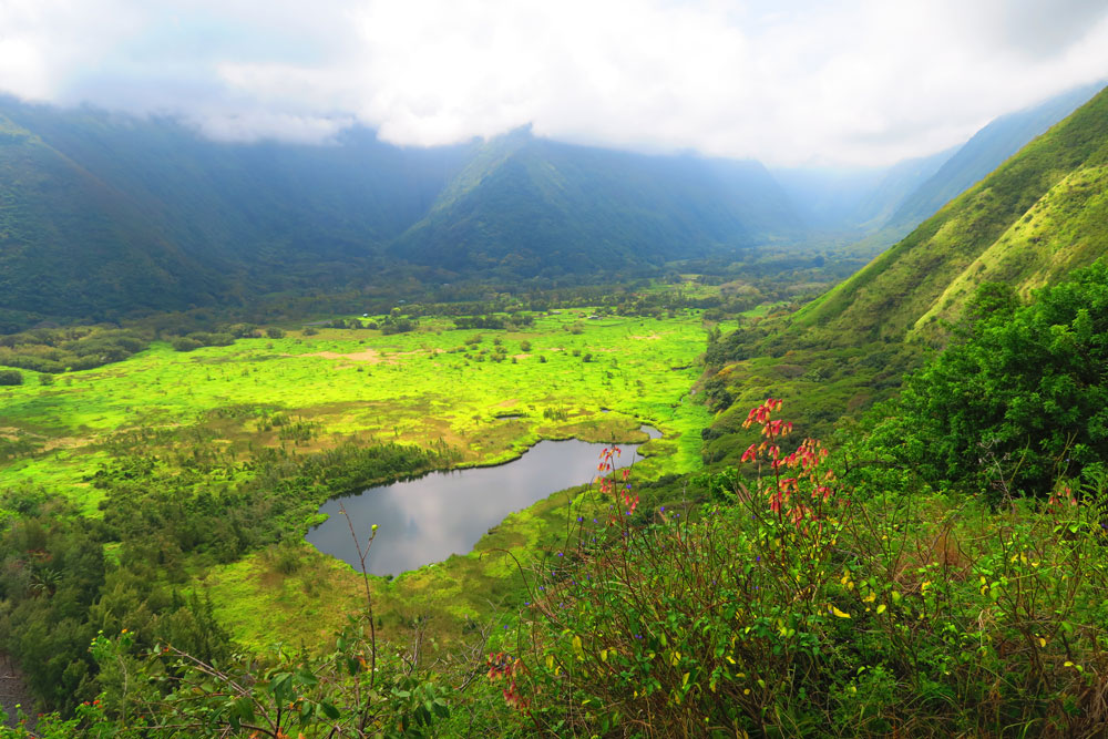 Waipio Valley - the mother of all valleys - post cover