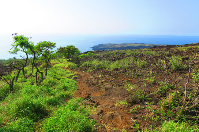 5 Days In The Big Island Sample Itinerary | Hawaii Travel Guide Captain Cook Monument Trail Map on mauna kea trail map, glenwood trail map, hawaii volcanoes national park trail map,