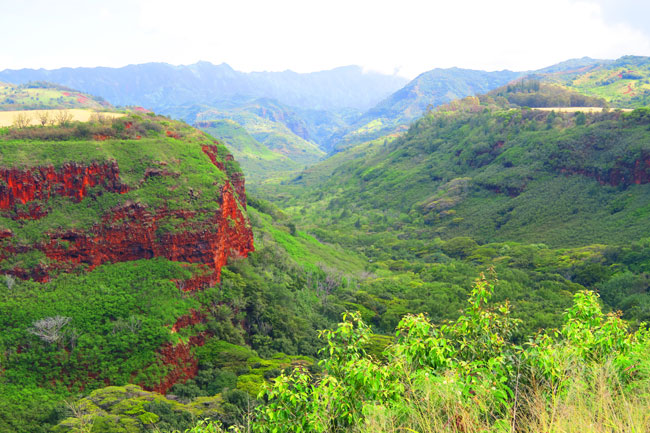 Hanapepe Valley Lookout - Kauai - Hawaii