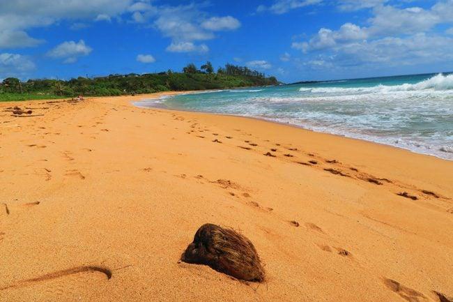 Kealia Beach - Kauai - Hawaii