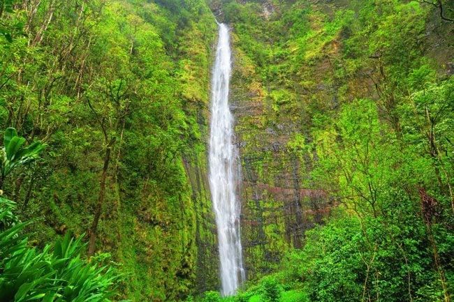 Pipiwai Trail Hike Waimoku Falls - Road to Hana - Maui Hawaii