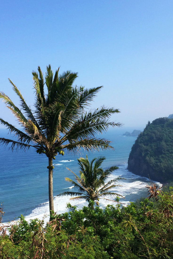 The Best Beaches On The Big Island Of Hawaii - Pinterest Cover_1
