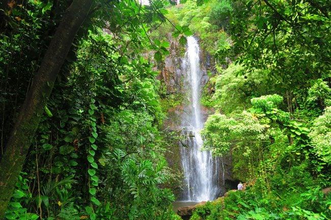 Wailua Falls - scenic road to Hana - Maui Hawaii