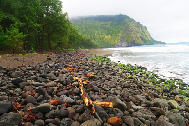 Waipio Valley Beach - Big Island Hawaii
