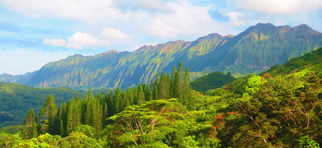 5 Days in Oahu sample itinerary - Pali Coast panoramic view - Hawaii