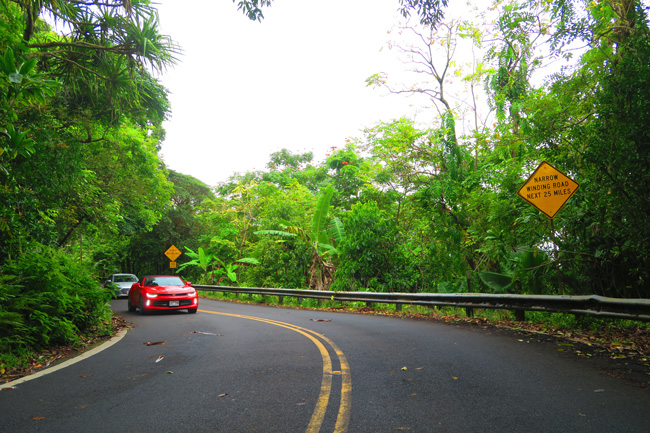 Hana Highway Maui - Drive Slow Sign - Hawaii