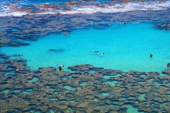 Hanauma Bay snorkeling 0 Oahu - Hawaii