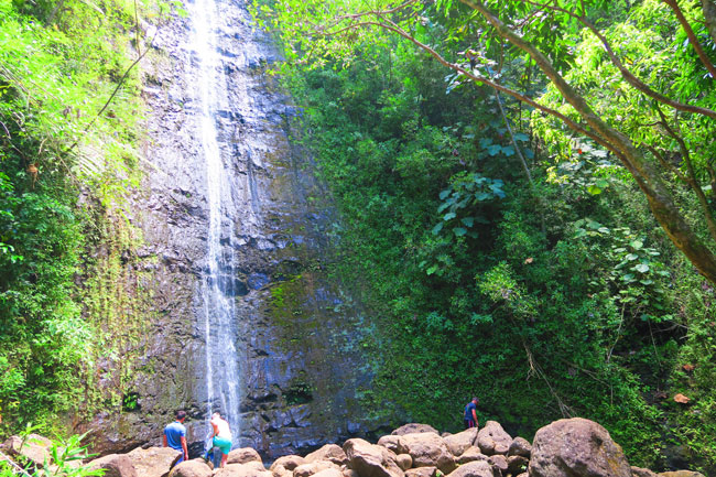 Manoa Waterfall - Oahu - Hawaii