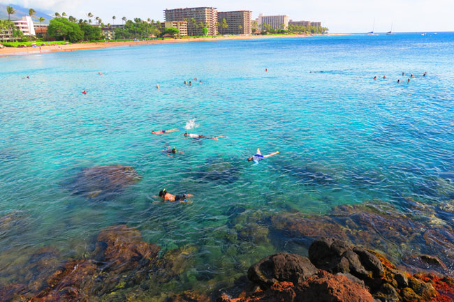 Snorkeling Black Rock Beach Kaanapali Maui Hawaii
