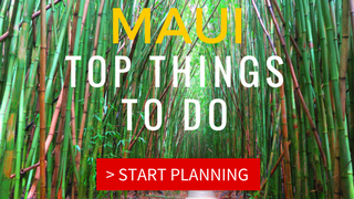 Top 10 Things To Do in Maui - Thumbnail