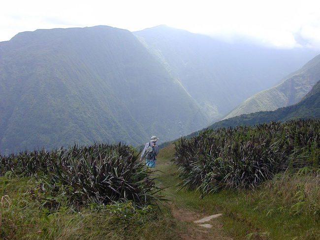 Waihe'e Ridge Trail - Maui - Hawaii By Forest & Kim Starr