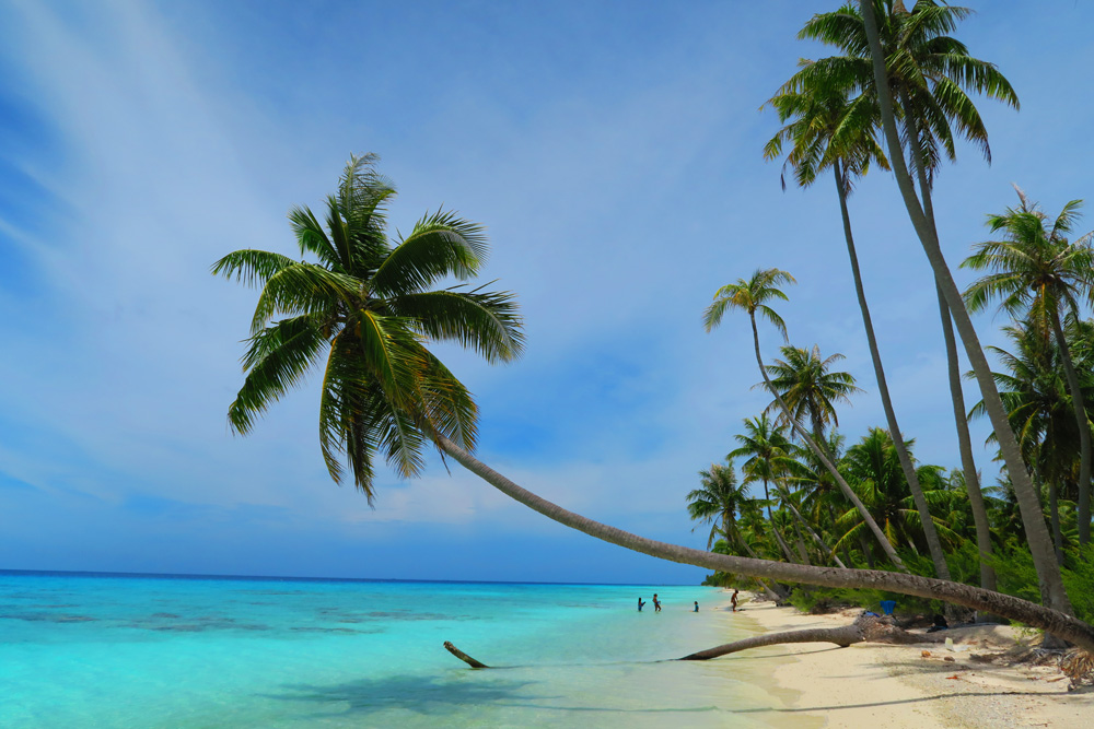 חוף טרופי חול לבן - טהיטי- פולינזיה הצרפתית