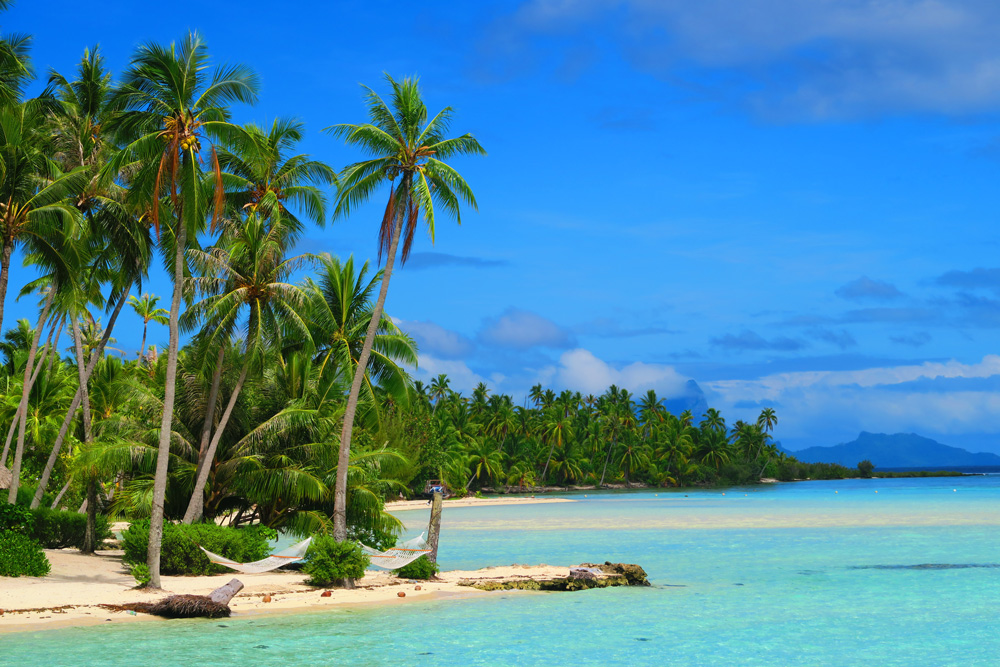 חוף טרופי - טהיטי - פולינזיה הצרפתית