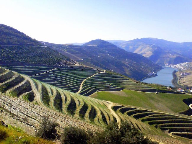 Douro Valley wine country - Portugal