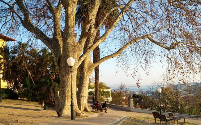 Jardim do Torel - Lisbon Portugal
