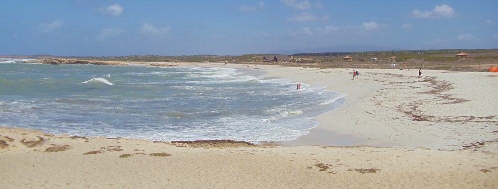 Is Arutas Beach - Sardinia - panoramic view