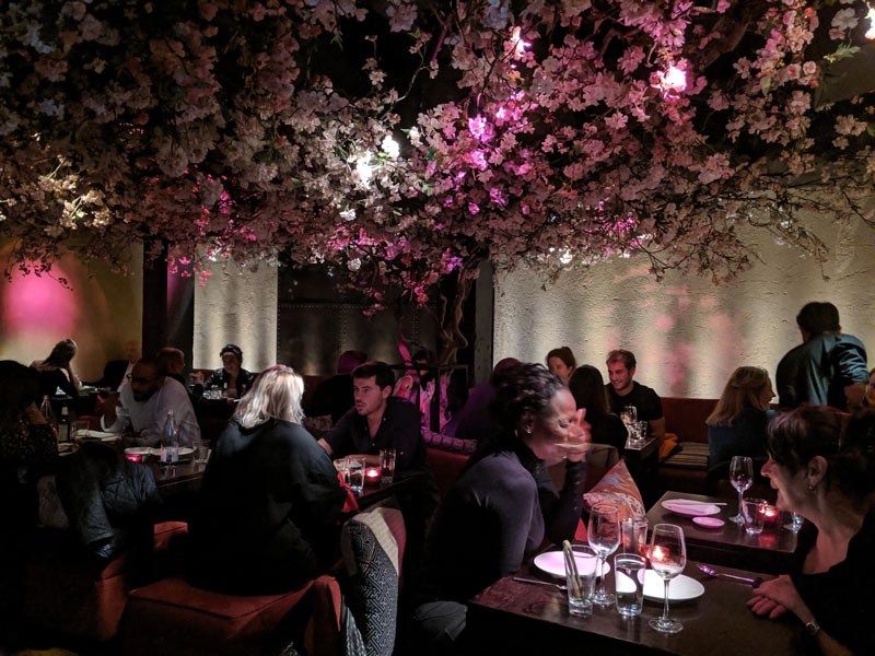 Roka London Restaurant - downtairs bar and cherry blossoms 2