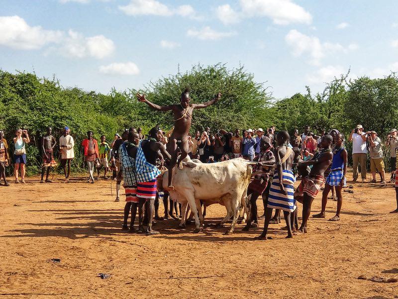Hammer tribe bull jumping ceremony - Vagabjorn