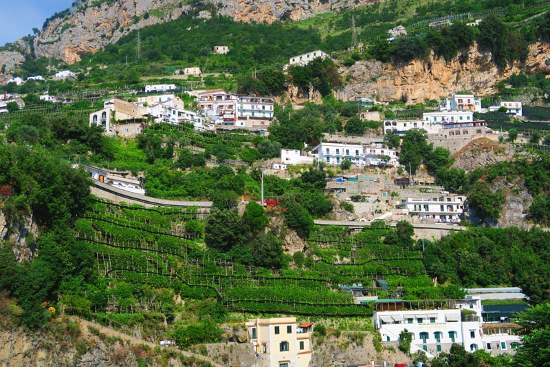 Amalfi coast scenery - villages and lemon groves