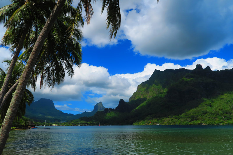 Cooks Bay Moorea French Polynesia