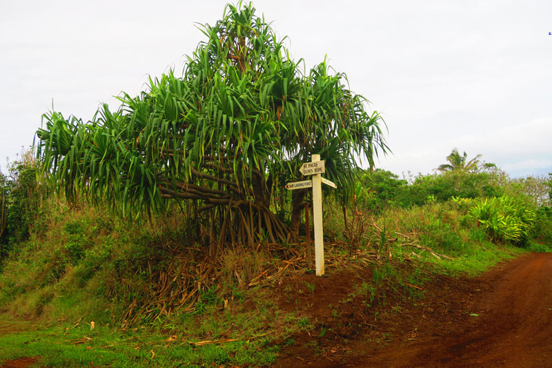 Pitcairn Island place name signs