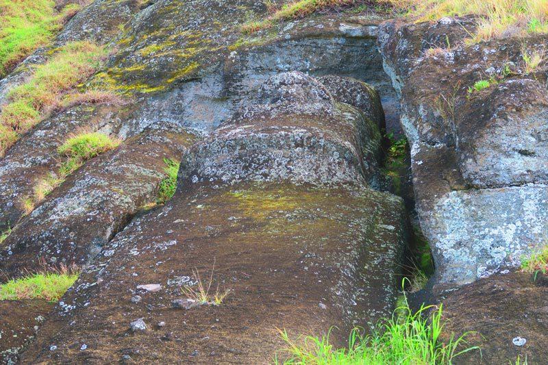 Te Tokanga The Giant Moai Rano Raraku Easter Island
