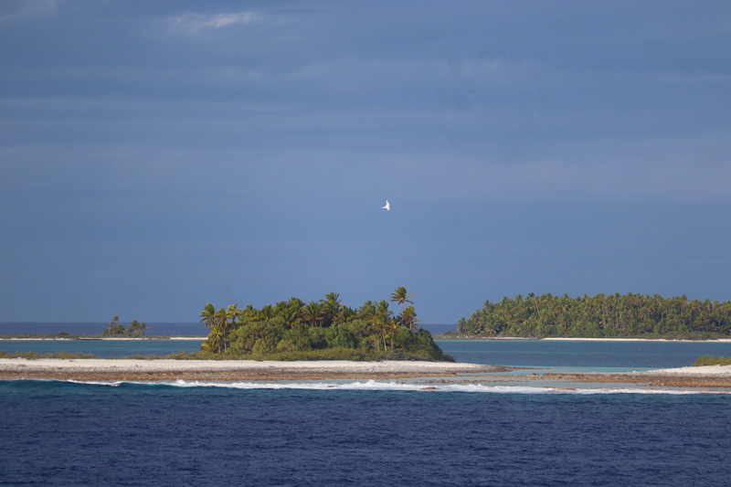 Temoe Atoll - remote South Pacific atoll - Gambier Islands French Polynesia 3