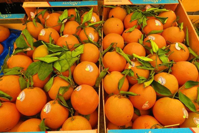 Fruit in the Campo de Fiori Market- Rome