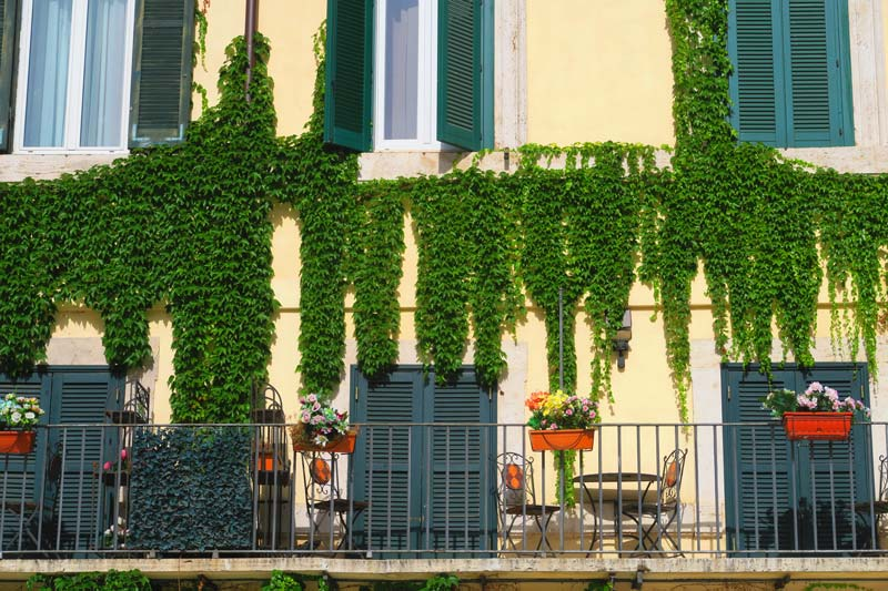Terrace in Piazza Navona Rome