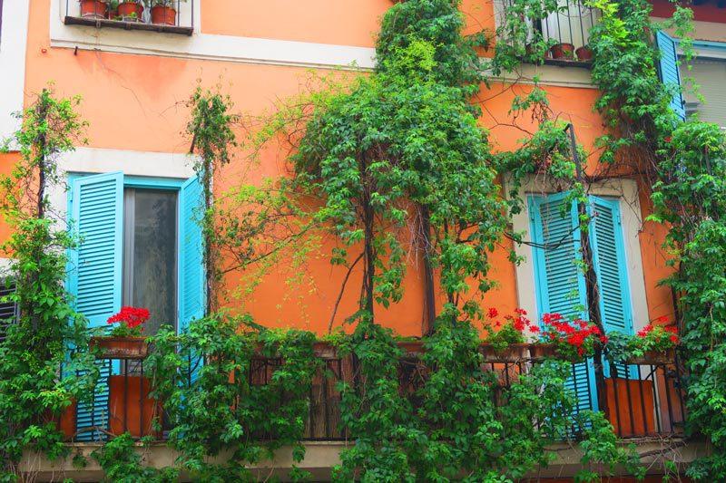 Trastevere - Rome - terrace