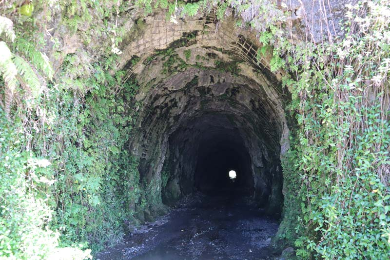 Papenoo Valley Tahiti French Polynesia - Tunnel