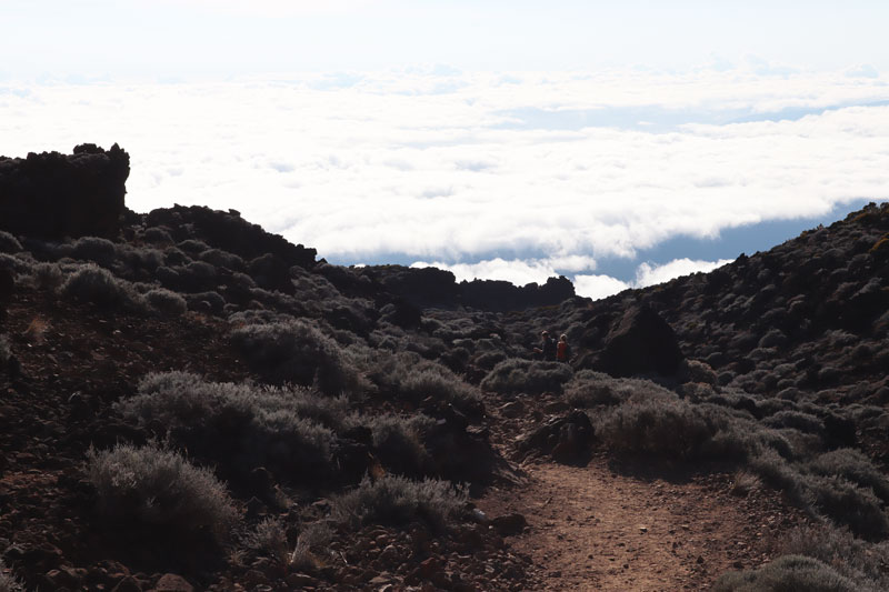 Hiking down from Piton des Neiges Summit - Reunion Island - above cloud line