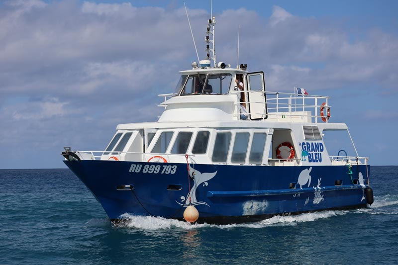 Le Grand Bleu dolphin and whale watching boat - Reunion Island