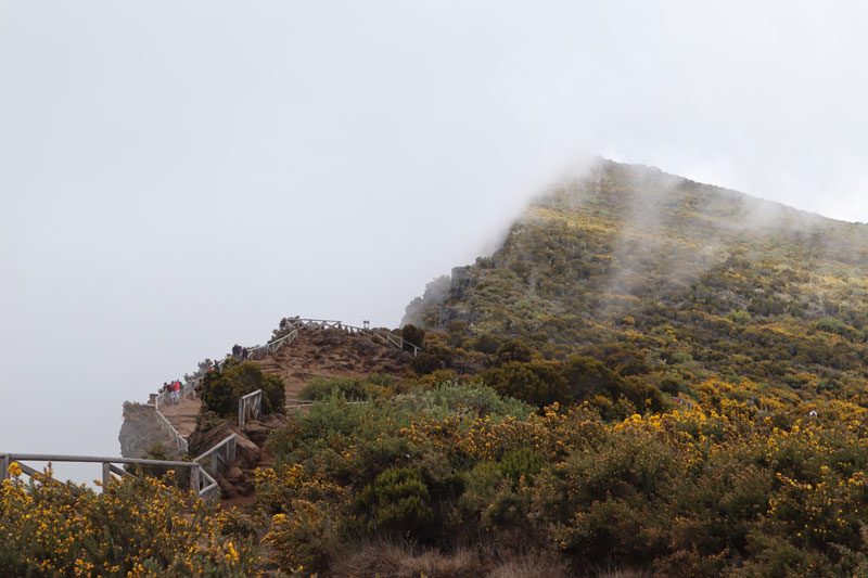 Maido scenic lookout Reunion Island - covered in clouds