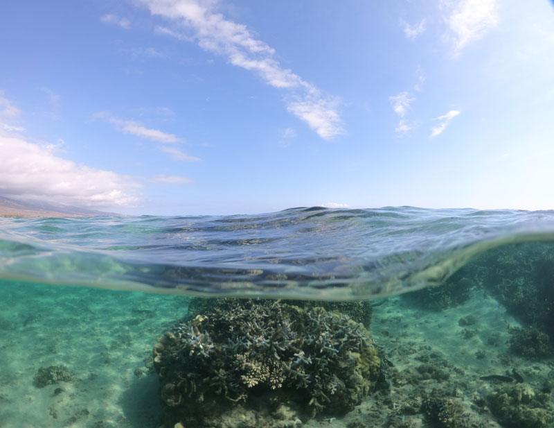 Plage de la Salines - Reunion Island - underwater