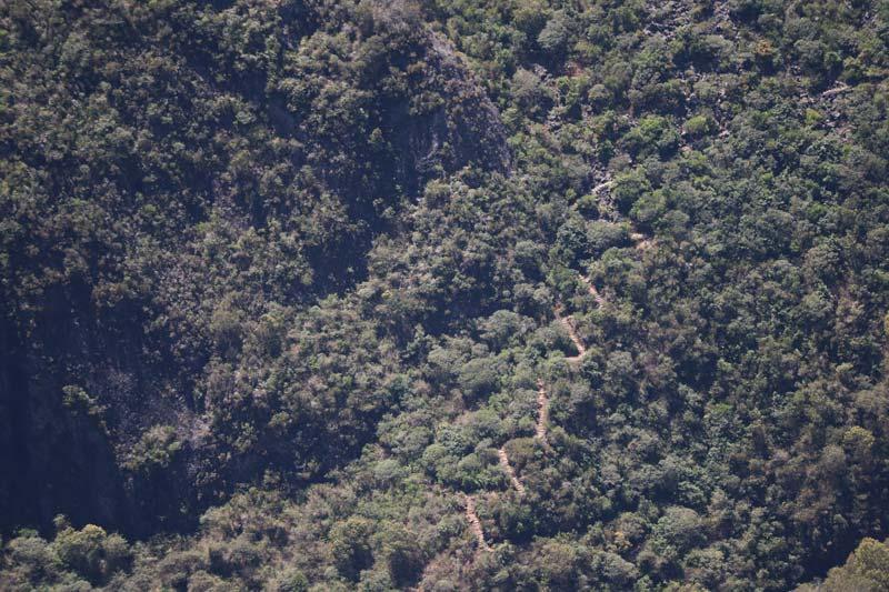 Sentier de Roche Plate - Reunion Island hike - trail zig zag