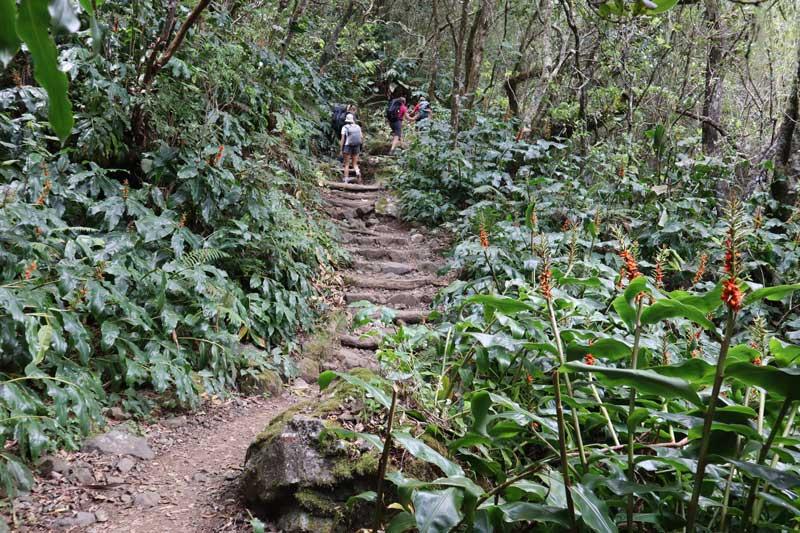 Trailhead of Piton des Neiges hike - Reunion Island