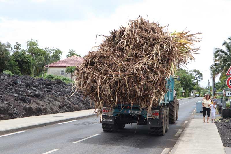 Sugar cane truck - Reunion Island