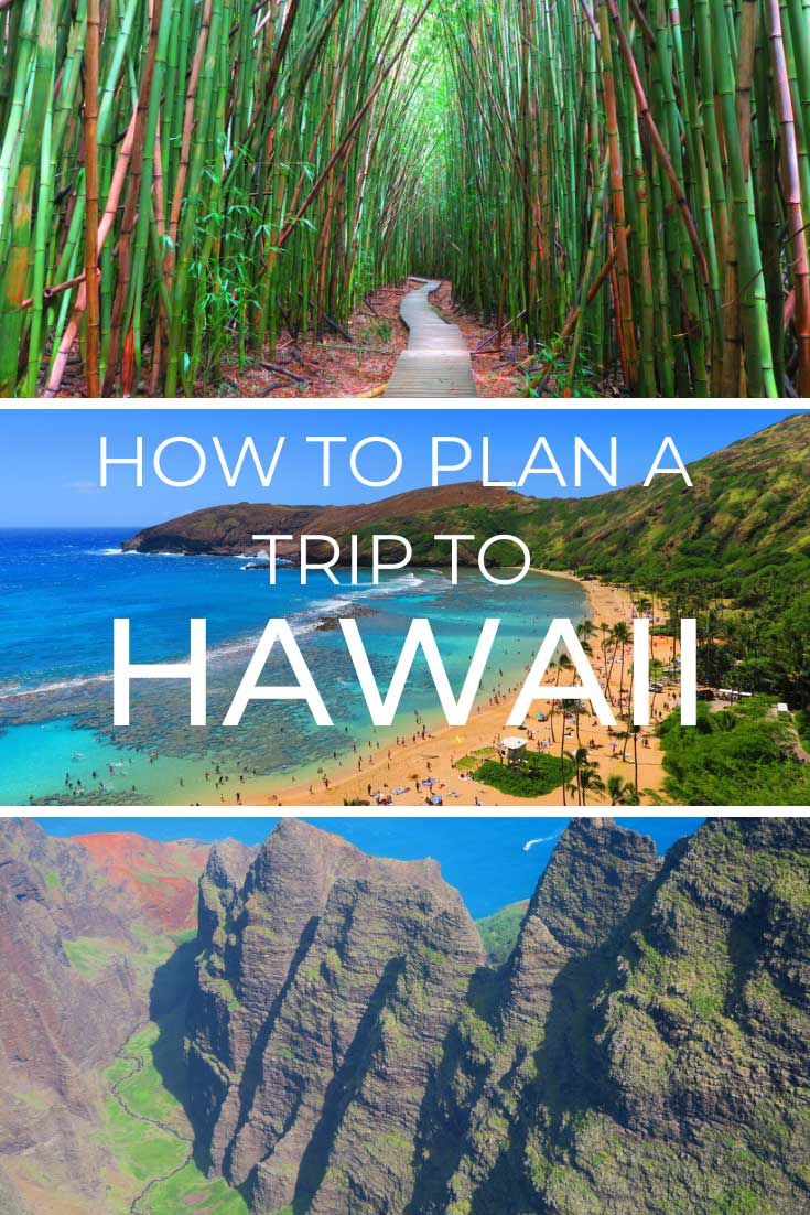 How-to-Plan-a-Trip-to-Hawaii-Like-a-Pro---pin